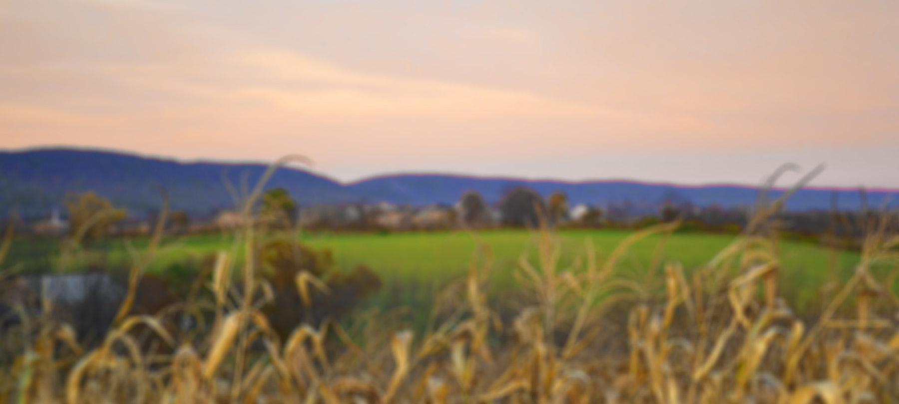 farmland header image